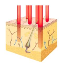 加齢や紫外線で老いた肌の入れ替え&再構築